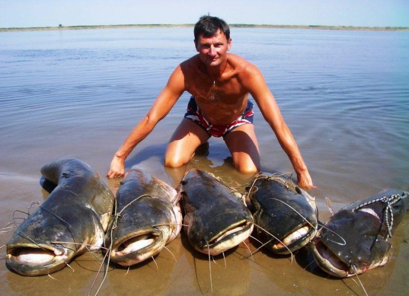 Де найкраще рибалити і засмагати на Тернопіллі?