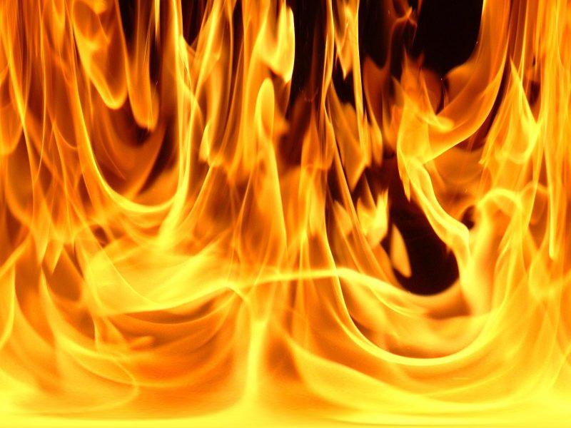 Бомжі у Борщеві спалили будівельний вагончик