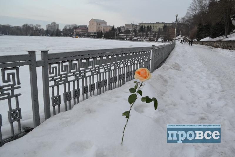 Перші подихи весни у Тернополі