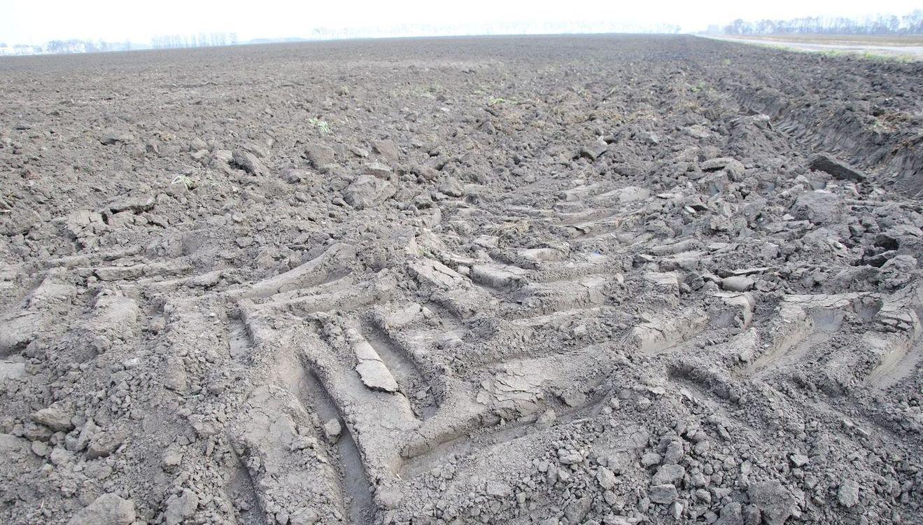 Найбільше договорів агрострахування укладено на Тернопільщині