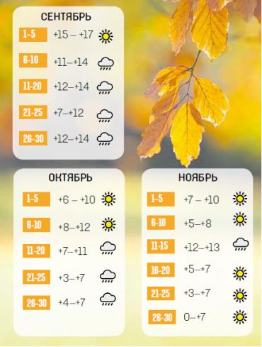 Осінь буде холодною, дощовою і без бабиного літа