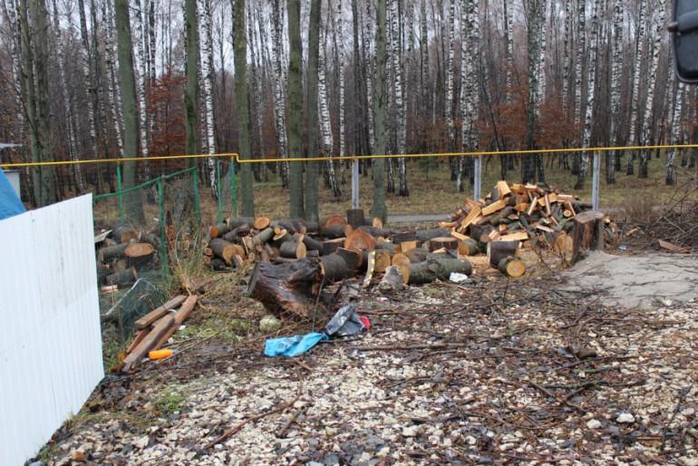 У  Тернополі скоро не залишиться парків