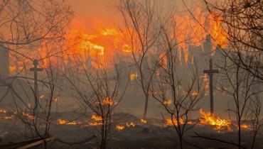 Пять тысяч человек остались без жилья из-за пожаров в Забайкалье: сибиряки Путина чуть не побили (видео)