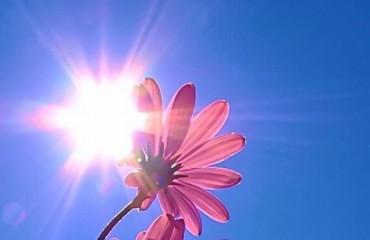 На Україну насувається неймовірна спека
