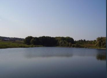 У Мушкатівському озері ледь не втопився п'яний хлопець