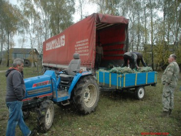Із Тернопілля в зону військового протистояння на Сході України рушив дев'ятнадцятий рейд