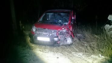 У Вишгородку водій іномарки не впорався з керуванням (фото)