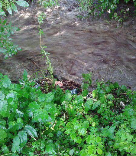 На Тернопільщині річка Серет збільшилась у десятки разів після сильного дощу