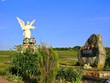 У Зборівському районі продали 25 гектарів лісу