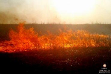Про небезпеку спалювання сухої трави та інших рослинних залишків