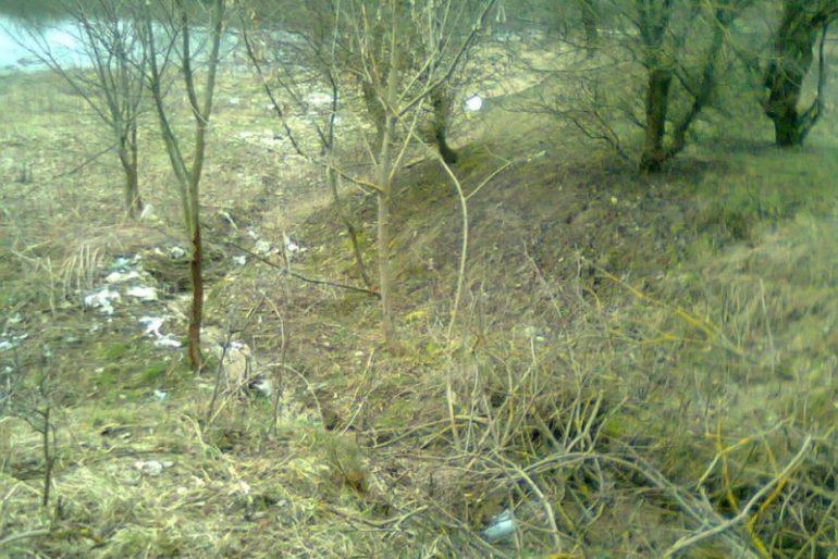 Мешканці Скали-Подільської насмітили, а жителі Хмельниччини прибрали
