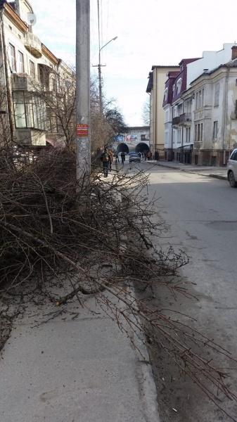 """Тернопільські комунальники втілюють проект """"лінивого ландшафтного дизайну"""" на тротуарі"""