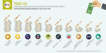 Які найпопулярніші професійні сфери у Тернопільській області?