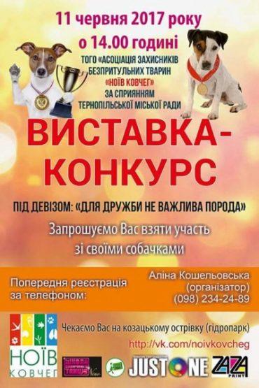 Виставка собак відбудеться у Тернополі