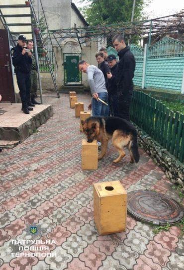 У Тернополі з'явиться кінологічний патруль