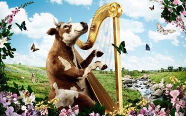 17 травня у Тернополі розкажуть про екологічну ситуацію в області