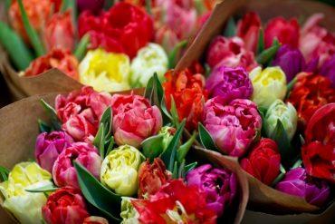 Раніше судимого тернополянина підозрюють у вчиненні крадіжки з магазину квітів