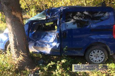 На Монастирищині Fiat Doblo врізався у дерево
