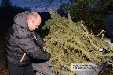 Рослини коноплі та зброю вилучили оперативники в жителя Збаражчини