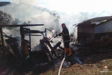 У Борщові згоріло все: пожежники встигли сфотографувались лише на фоні згарища