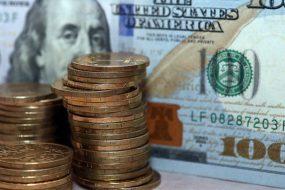 Гривня на міжбанку втратила більше 20 копійок