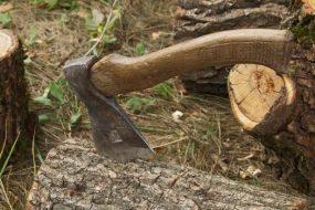 Чоловік з Новосілки загинув, рубаючи дерево в Устечку