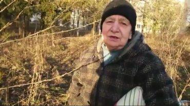 27 грудня тернополяни копають город: за 70 років люди не пам'ятають такої теплої зими