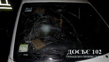 На Теребовлянщині автомобіль збив чорта