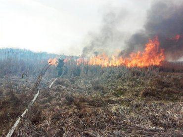 На Тернопільщині оголосили надзвичайний рівень пожежної небезпеки