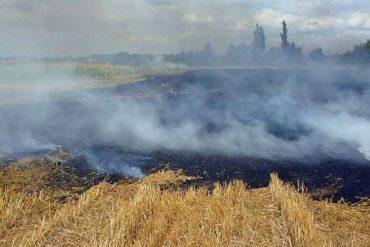 На Козівщині виявили обгоріле тіло чоловіка