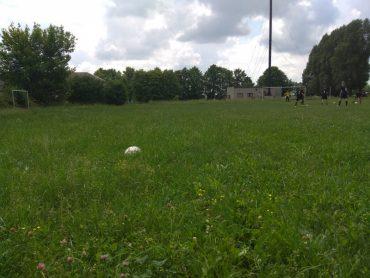 Футбольні пристрасті на Збаражчині: у Грицівцях бракує чоловіків, щоб скосити траву на футбольному газоні?