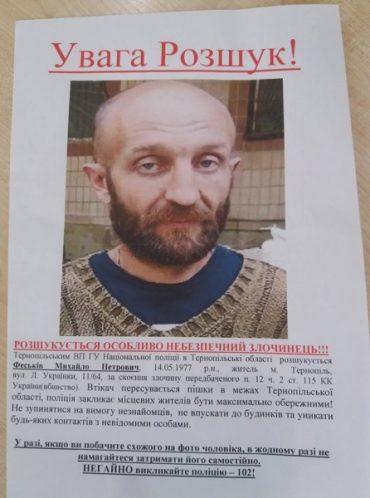 Кримінальна ситуація на Тернопільщині: вражаючі факти за пів року