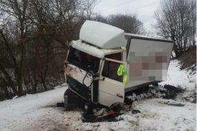 П'яний водій вантажівки злетів у кювет поблизу села Романівка