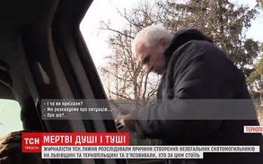 На Тернопільщині агітаторам Коломойського – журналістам ТСН – перешкоджали під час зйомок про скотомогильники
