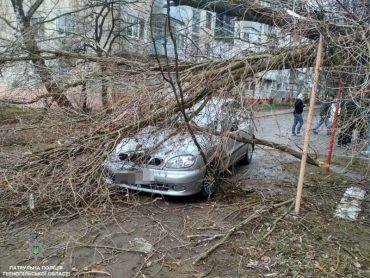 У  Тернополі буревій пошкодив дві автівки