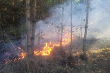 2 квітня в Тернопільській області рятувальники ліквідували 44 пожежі в природних екосистемах, на площі понад 57 гектарів
