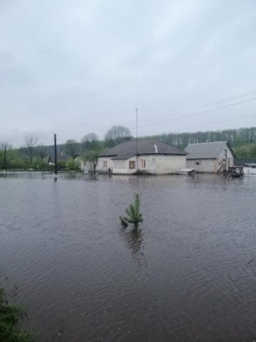 У селі Максимівка Збаразького району підтопило дві хати