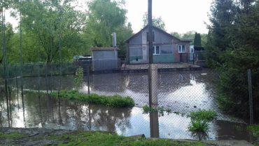 Після дощу затопило село Малий Говилів