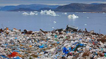 Створено бактерію, що переробляє пластик