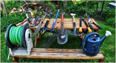 Поради починаючому садівникові: вибір основного інвентарю та правила догляду за ним