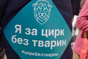 Міністерство культури України припинить купувати тварин для державних цирків