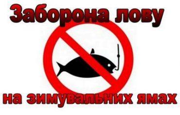 У Тернопільській області заборонений будь-який вилов риби в зимувальних ямах