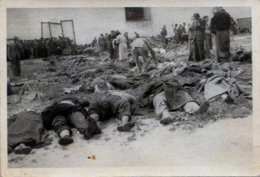 Влітку 1941 року енкаведисти розпочали масові розстріли в'язнів у тюрмах України