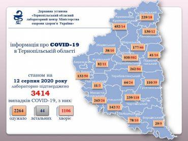Який наступний алкогольний фестиваль проведе мер Тернополя Сергій Надал, щоб ще більше поширився коронавірус?